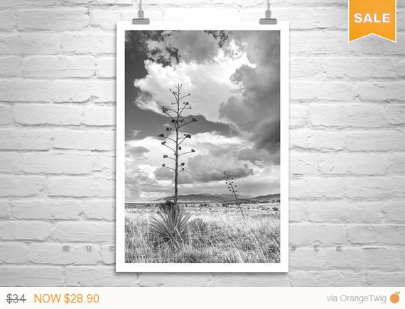 Sale 15% Stormy Sky, Desert Monsoon, Arizona Landscape, Vertical Art, Black and White, Fine Art Photography, Sky Art, Huachuca, Thunderstorm