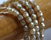 CASHMERE TOTS .. 50 Picasso Faceted Czech Glass Beads 4mm (5105-st)