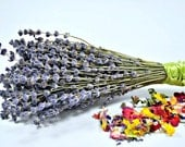Dried Lavender - Preserved Lavender - Lavender Bouquet - Lavender Bunch - Dried Lavender Bunch - French Lavender - Dried Flowers