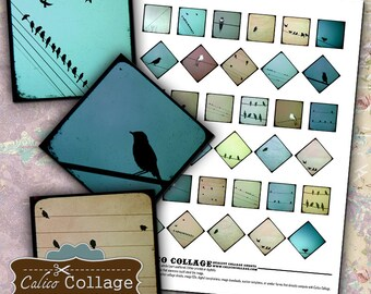 Birds on a Wire, Collage Sheet, 1x1 Inch Squares, Images for Pendants, Printable Squares, 1x1 Collage, Instant Download, 1x1 Squares