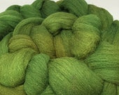 Swamp Thing - 4oz - 114g - Combed BFL Top