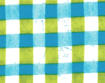 A Stitch in Color 2 Yard Remnant 23206-13