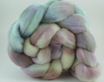 4oz  Polwarth Combed Top - Les Poissons
