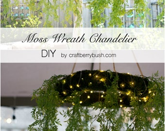 """2 Moss wreaths-18"""" Moss covered Straw wreath-Preserved Moss-Easy care"""