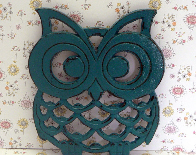 Cast Iron Owl Trivet Teal Lagoon Blue Shabby Chic Woodland Kitchen Hot Plate Home Decor