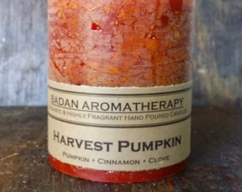 Harvest Pumpkin: Cinnamon Clove & Pumpkin Scented Pillar Candle, 3x3.5 Inches Tall