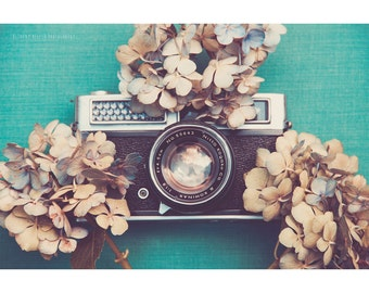 Still Life Photography Vintage Camera Blue Hydrangea Dried Flowers Floral Nature Rustic Decor Dreamy Shabby Chic Photographer Teal Cream Art