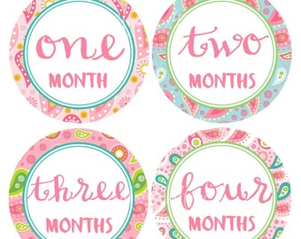 GIFT, Ready to SHIP,  Monthly Baby Girl Stickers, Baby Girl Month Stickers,  Pink Green Paisley, Nursery Decor Photo Prop
