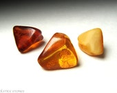 3 Triangular Baltic Amber Tumbled Stones, Small Polished Pieces // Sacral & Solar Plexus Chakra // Crystal Healing // Mineral Specimens