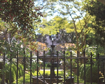 Charleston Garden Print, South Carolina Fine Art Photography, Wrought Iron Fence, Affordable Home Decor, Wall Art, Travel Photography