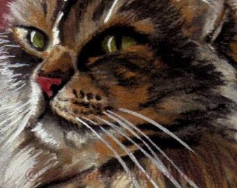Beautiful Dreamer Cat - cat art, cat print, cat portrait, Maine Coon, cat gift, cat card, pet portrait artist,
