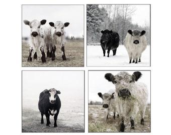 Set Black and White Photography Set of White and Black Cows in the Snow Set of Four Photographs
