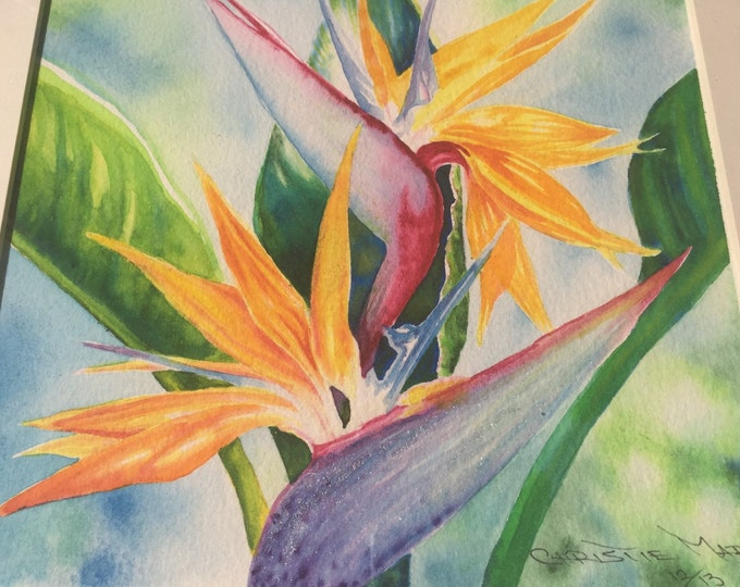 ORIGINAL ART Tropical Flower Bird of Paradise Watercolor Painting Hawaiian Island, Home Decor Wall Art Framed by Christie Christie Marie