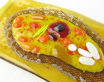 Paramecium Fused Glass Dish Y