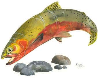Limited Edition GICLEE MINI Print / Watercolor painting of Cutthroat Trout