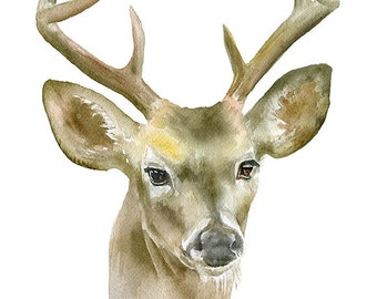 Deer Buck Watercolor Painting 8 x 10 - 8.5x11 - Giclee Print Reproduction Woodland Nursery Decor - Eight-point