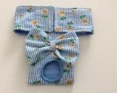 Dog Diaper - Female Dog Diaper - Dog Panties -  Britches - Blue Striped Daisies - Available in all Sizes