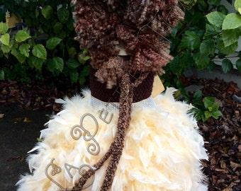 Lion costume, pageant dress, pageant wear, handmade, lion dress, feather dress, lion tutu, feather tutu, girls tutu, girls dress, photo prop