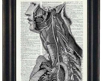 BOGO SALE Anatomy Wall Art Prints Dictionary Art Prints Body Wall Art Prints Body Wall Art
