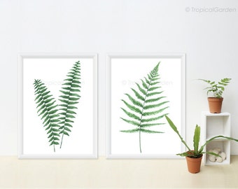 Fern Watercolor Prints Set of 2 - Any TWO Ferns, Botanical Prints / 8x10 OR 8x11 Tropical Wall Decor, Watercolor Leaves