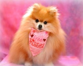 I Give Free Kisses Valentine's Day Dog Bandana