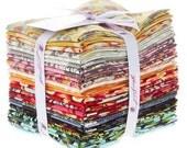 MOON SHINE - Fat Quarter Bundle - Tula Pink by Free Spirit Fabric - 30 pcs