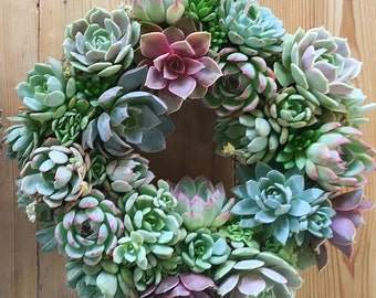 "XL 14"" Succulent Wreath, Gabrielle's Secret Garden Wreath, the perfect wedding wreath in delicate pastels colors- really beautiful!"