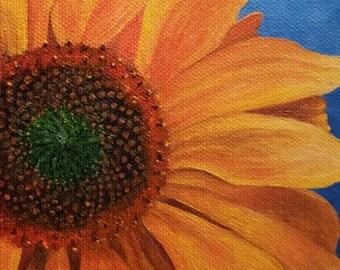 brillant sunflower