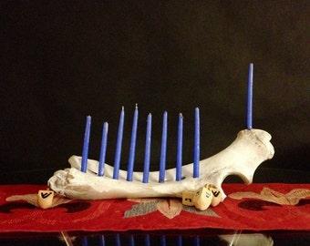 White Cow Bone, Hanukkah Menorah,  Home Decor