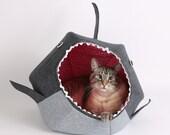 Shark Cat Ball Cat Bed a Funny Pet Bed for Shark Week