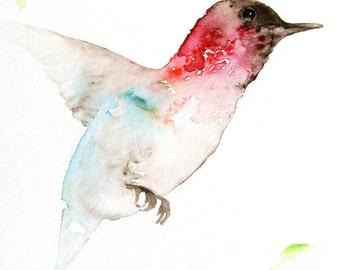 Bird Art Card Blank Greeting Card Hummngbird