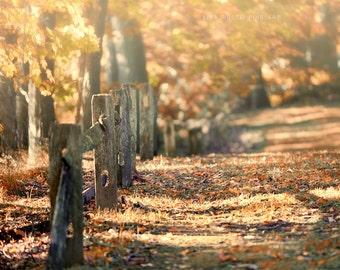 Autumn Decor, Fall Decor, Autumn Landscape Photograph, Fall Landscape Picture, Rustic Home Decor in Fall, Fence in Autumn, Farmhouse Decor.
