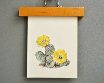 Vintage Yellow Cactus Book Plate
