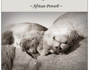 Sleeping Lions Fridge Magnet, Inspirational Fridge Magnet, Animal magnet