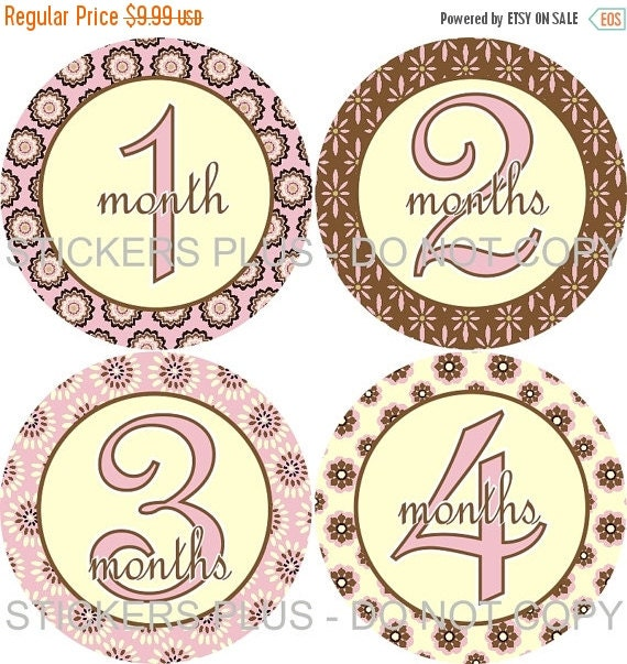 SALE Baby Month Stickers Plus FREE Gift Monthly Baby Girl Stickers Brown Pink Cream Flower Baby Shower PRECUT Baby Age Stickers Photo Prop
