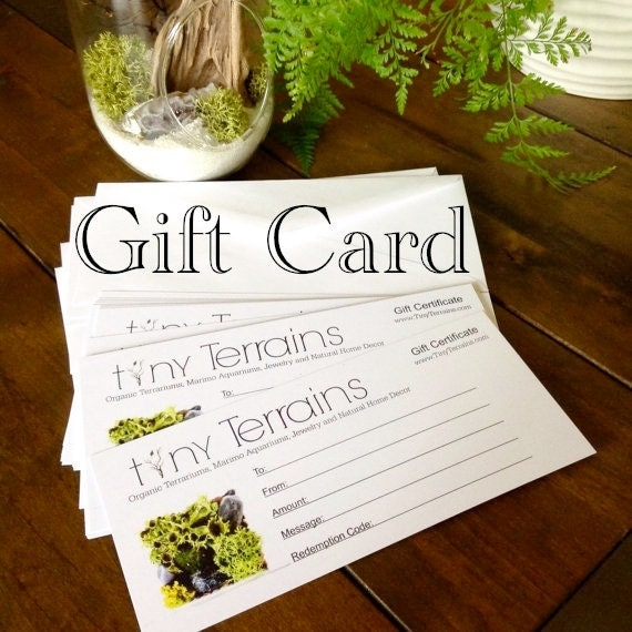 Terrarium or Marimo Aquarium Gift Certificate / Gift Card for Tiny Terrains: Mailed or Emailed, Any Amount