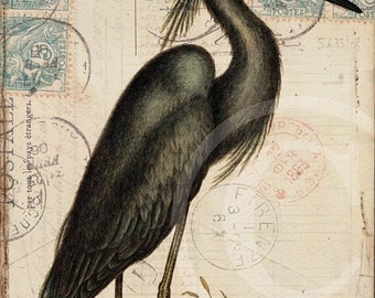 ON SALE Antique Bird Collage Print  - Home Decor - Blue Heron 1