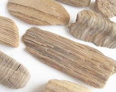 12pcs driftwood supplies Nature craft materials Sea polished Driftwood chunk Beach decors Drift wood pieces For DIY projects