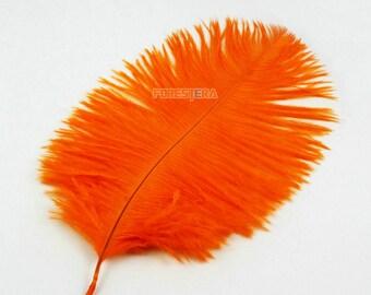 2 Pieces Orange Feather 20-25cm (YM121)