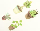 potted plant ideas - Japanese Washi Masking Tape - 30mm Wide - 7.6 yards
