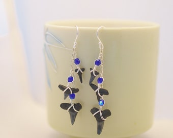 Blue and Silver Sharks Tooth Earrings