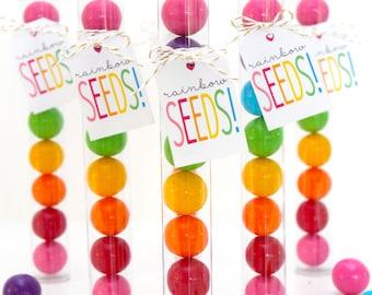 Rainbow Seeds Gum Ball Tubes