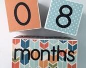 Age Blocks - Baby Age Blocks - Monthly Age Blocks - Baby Boy - Baby Girl - Baby - Baby Shower - Baby Gift - Photo Prop - Age Cubes - Newborn