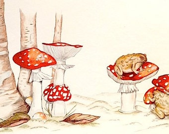 Toadstools with Toads, Art Print of Pencil Drawing, by Paula Kuitenbrouwer,