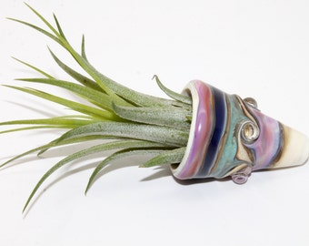 Lampwork Glass Hanging Air Plant Holder . Air Plant Continer . by Lori Davidson
