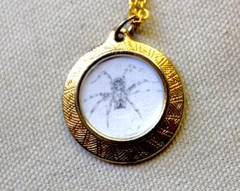 Spider Locket Necklace hand-drawn