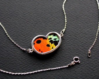 Real butterfly wing necklace.  Butterfly wing pendant. silver butterfly necklace. insect jewelry. butterfly necklace. Sunset moth