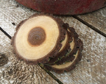 Natural Black Walnut Wood Coasters Slices Set of 4