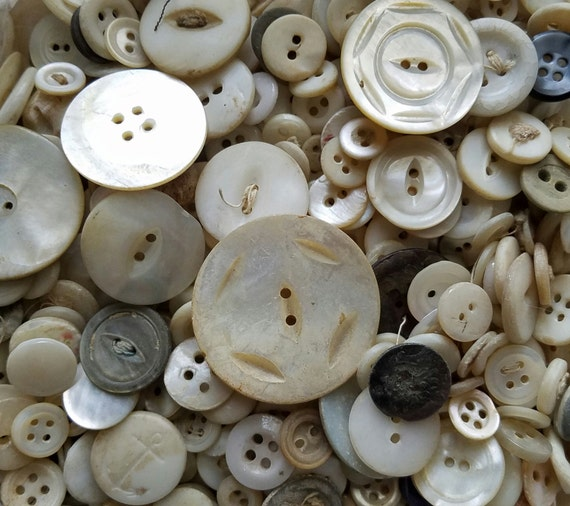 60 Antique Lady's Buttons in Whites | Mother of Pearl Buttons