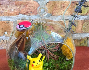 Gotta Catch'm All! Pokemon Air Plant Terrarium - A Unique Birthday or Holiday Gift